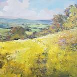 Below Colin's Field