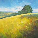 Wilkinson's Meadow