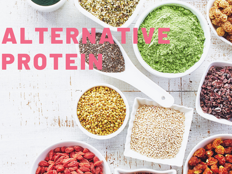 Alternative protein vs. conventional meat