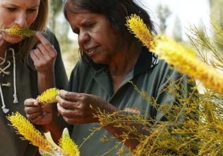 Increasing Indigenous Women's Participation through Native Ag+Food: Our how and why