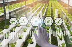 Indoor Farm technology