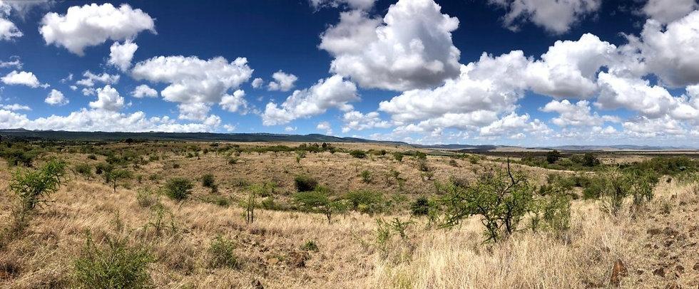 Kenya Landscape at Mt Kenya