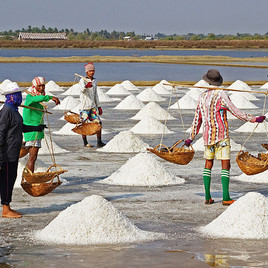 800px-Salt_Farmers_-_Pak_Thale-edit1.jpg
