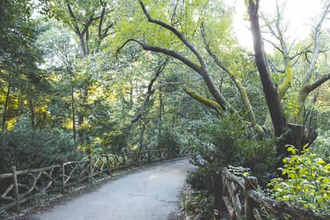 Central Parque - Nova Iorque