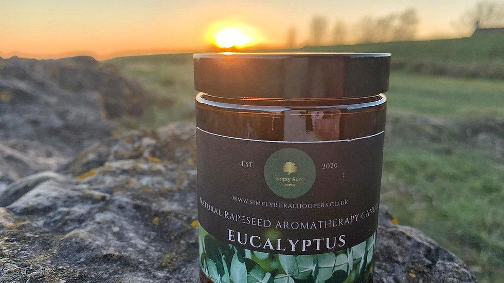 Eucalyptus Rapeseed Aromatherapy Candle