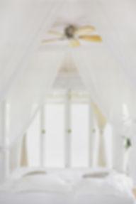 hutomo-abrianto-576212-unsplash (1).jpg