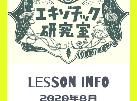 Lesson info  - august -