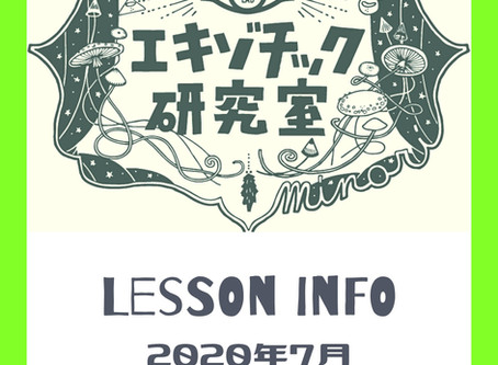 Lesson info  - july -