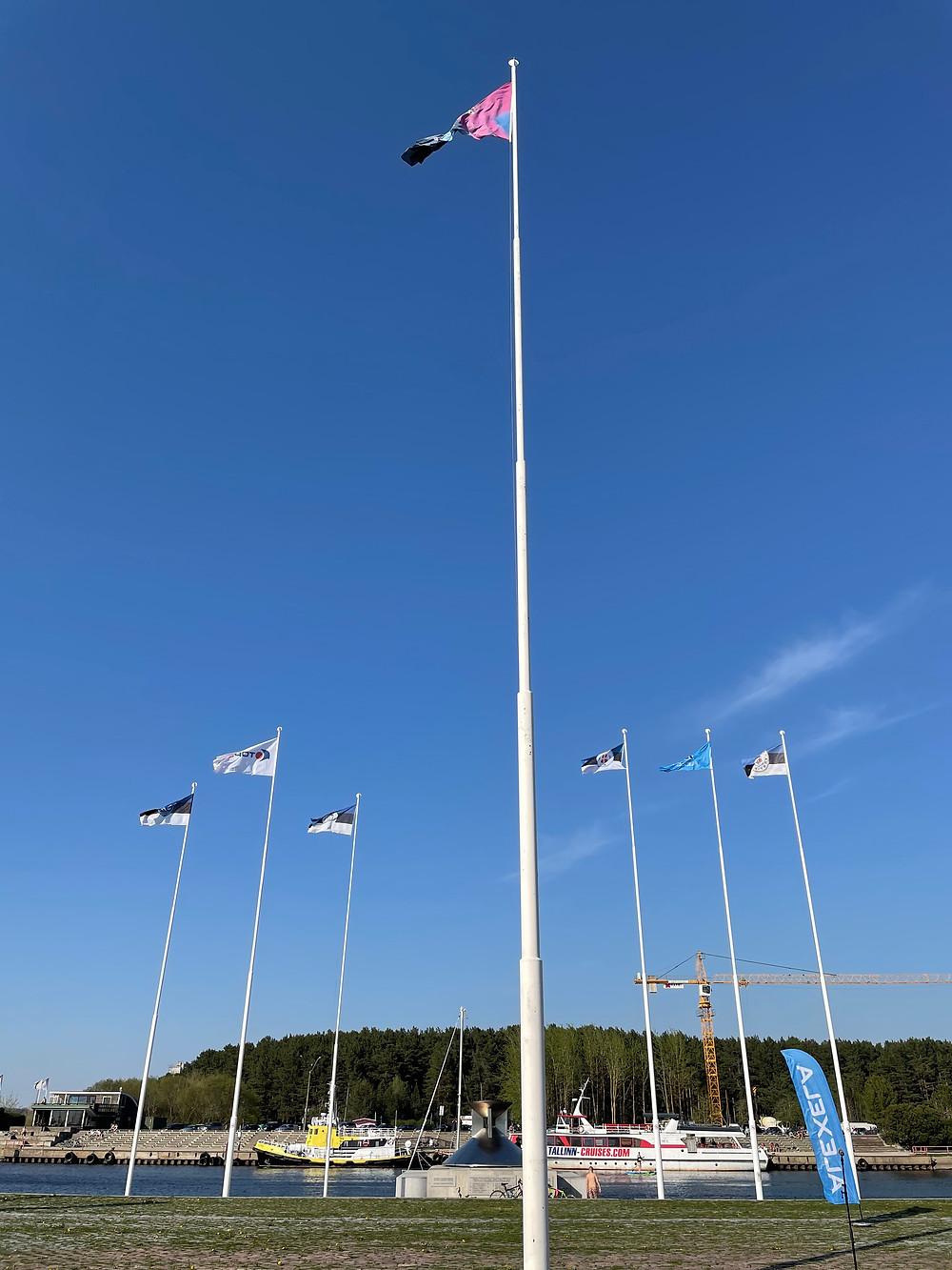 Alexela ORC MM 2021 ja korraldajate lipud Tallinnas olümpiatule väljakul