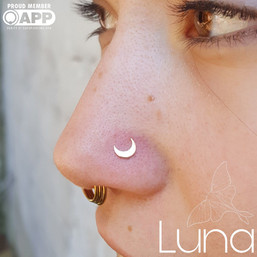 Rose gold moon end in healed nostril piercing