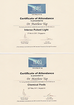 ADEG COC IPL n COC Chemical Peels 2011.P