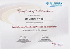 Aesthetic Practice Development 2013 Jan.