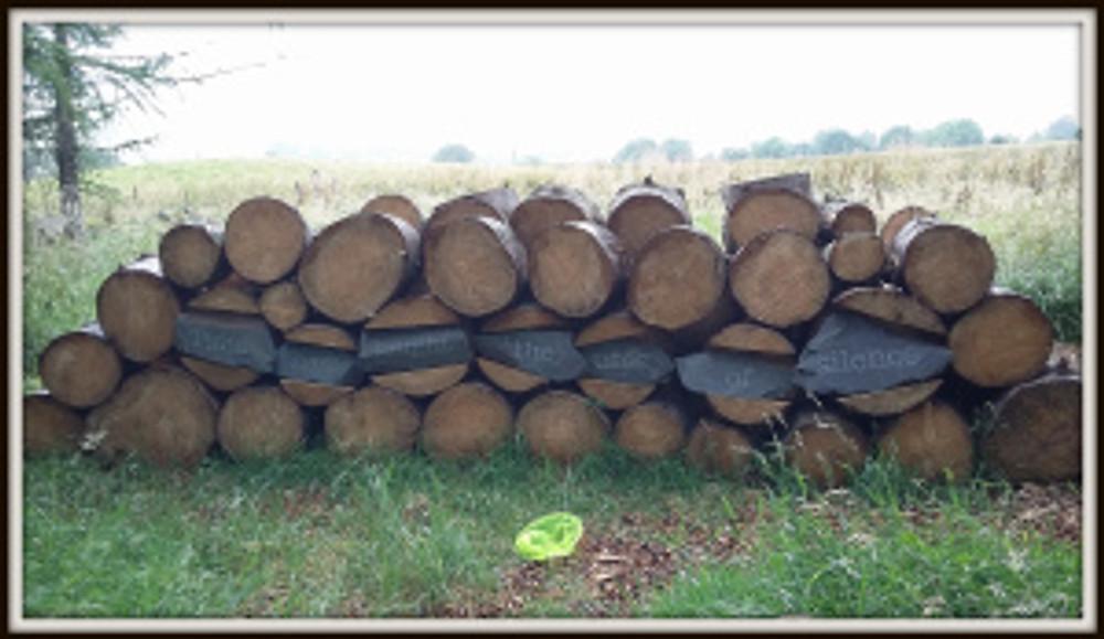 Poetry Path Wood Pile