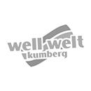 partner_270x270px_wellwelt.png