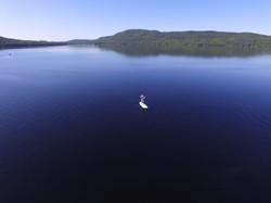 Hop Media Montreal - Paddleboard