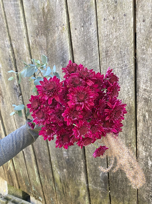 Heirloom Chrysanthemum bouquet - Berry