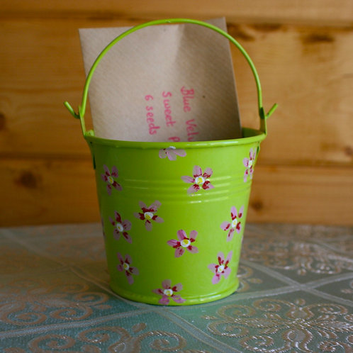 Hand Painted Plant Pot & Seeds