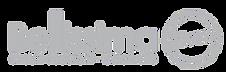 bellissimabeton-logo.png