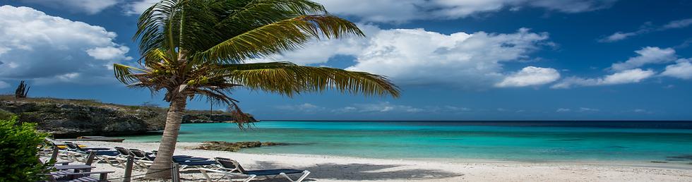 Jamaica Beach Sale 50% Off Memberships!