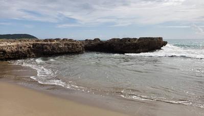 Treasure Beach - Coral coastline