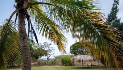 Welcome to Treasure Beach, Jamaica.