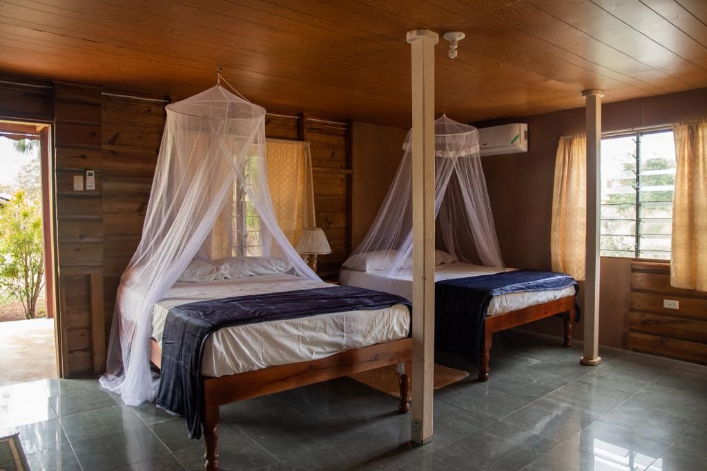 Wild Pine - Downstairs Room - 1 Queen + 1 Double