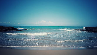 Private sacred medicine exploration by the sea