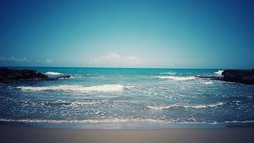treasure beach.jpeg