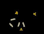 The Psilocybin Molecule