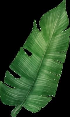 leaf 05.png