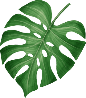leaf 02.png