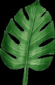 leaf 03.png