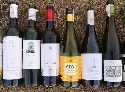 Wina z Lidla - nie tak szybki przegląd
