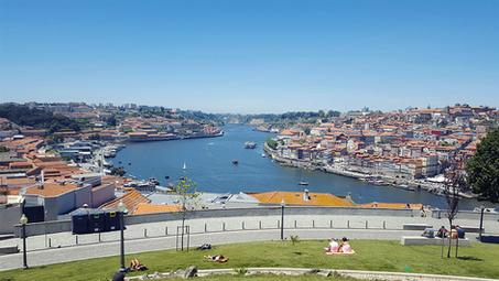 Porto w kieliszku i na talerzu