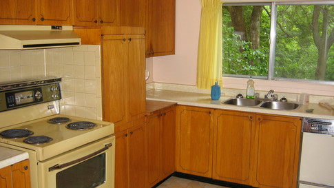 BEFORE mid-century kitchen makeover