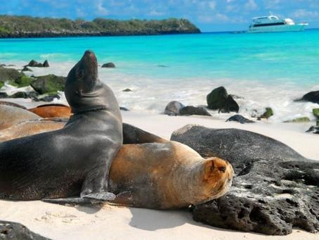 Leonardo DiCaprio difunde una petición para proteger a las islas Galápagos