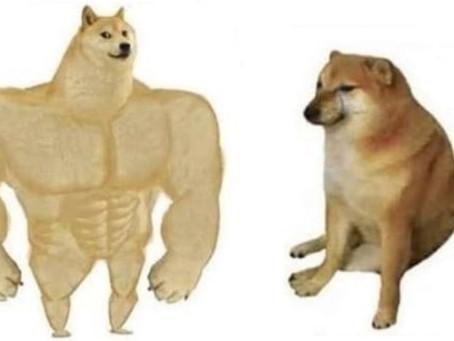 La historia del meme del perro de antes y de ahora que se volvió viral