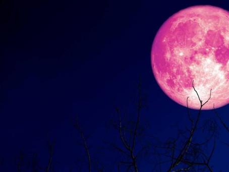 Luna de fresa: cómo, dónde y fecha para ver el fenómeno astronómico en Ecuador