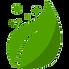exterra, la solution anti-termite respectueuse de l'environnement