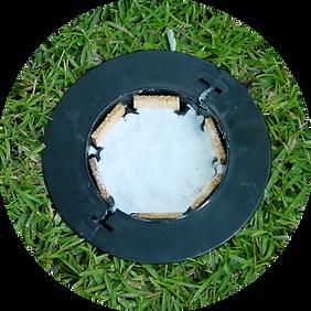 efficacité des pièges termites exterra