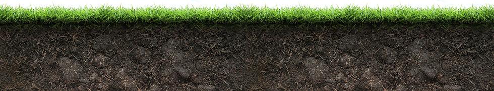 Exterra la solution anti-termite efficace et responsable