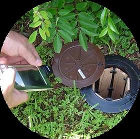 surveillance d'un piège appât anti-termite exterra