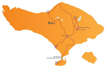 BALI DOLPHIN TOUR 1.jpg