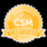 seal-csm.png