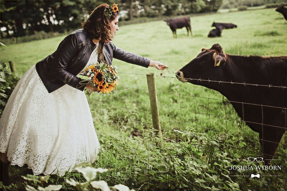Bride in the country side