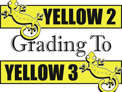 Yellow 2 to Yellow 3