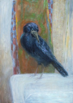 Crow on the Bathtub