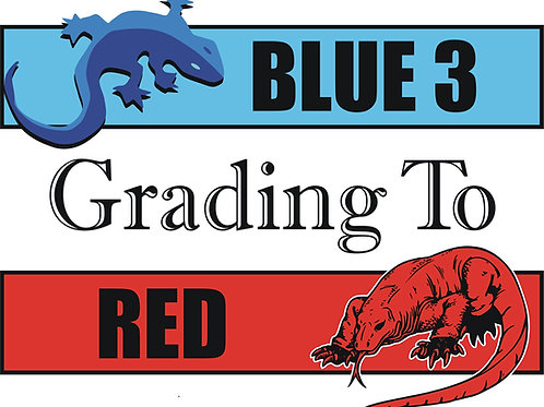 Blue 3 to Red