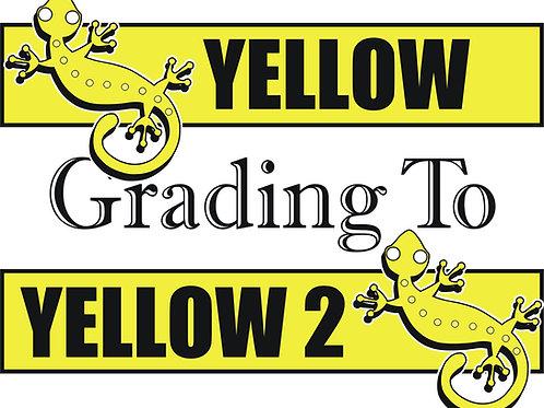 Yellow to Yellow 2
