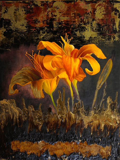 Day Lily at Dawn